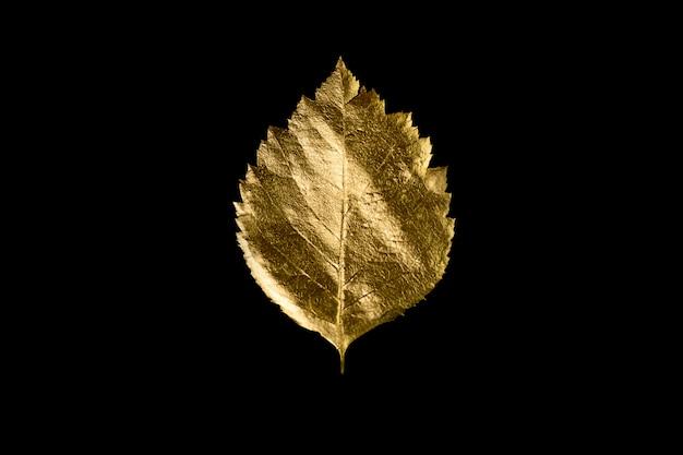 Composizione autunnale di diverse foglie e lettere d'oro