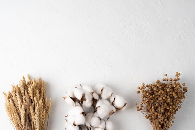 Composizione autunnale foglie secche fiori su sfondo bianco vista autunnale giorno del ringraziamento autunnale
