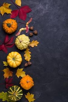 Composizione autunnale. pagina fatta delle foglie e della zucca secche multicolori differenti su fondo scuro. autunno, concetto di caduta. vista piana, vista dall'alto, copia spazio