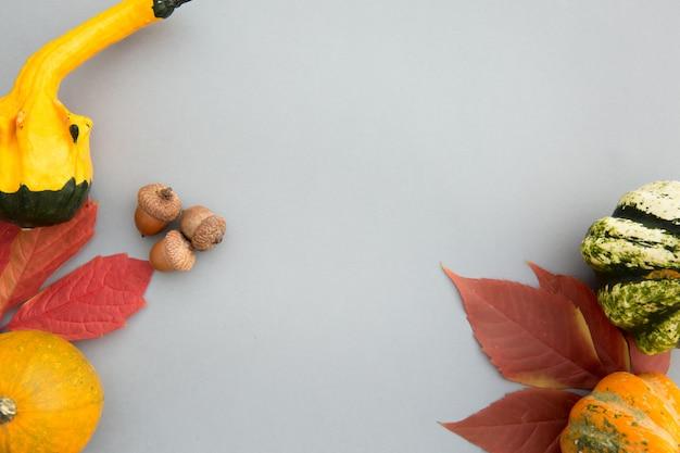Composizione autunnale. zucche, foglie su sfondo grigio pastello.