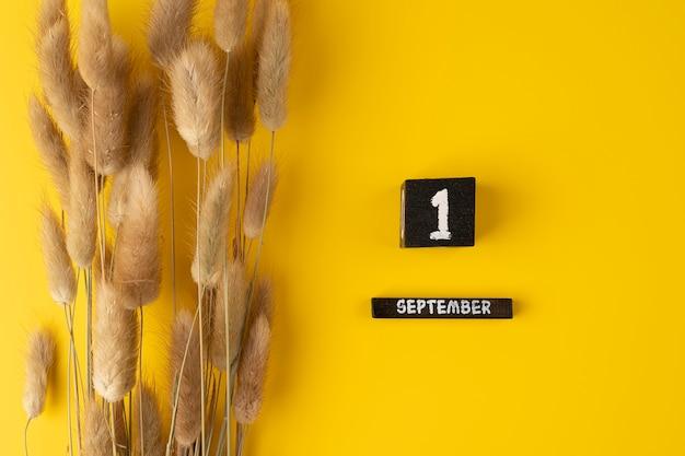 Composizione autunnale calendario in legno 1 settembre e fiori secchi su sfondo giallo vista dall'alto