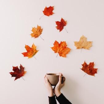 Concetto di autunno con una tazza in mani femminili su uno sfondo di foglie