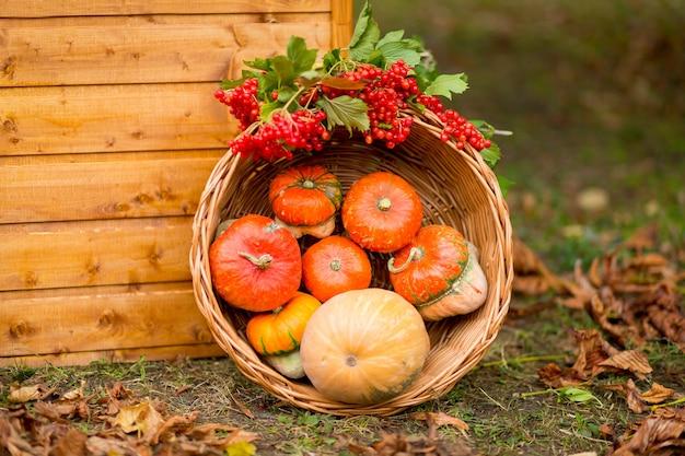 Arredamento autunnale. zucche, bacche e foglie all'aperto