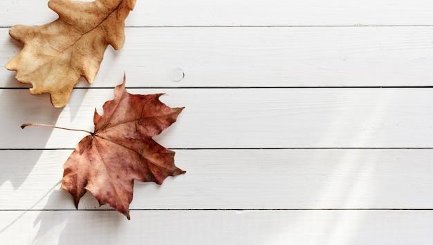 Foglie secche di autunno sulla vista superiore del fondo di legno bianco delle plance