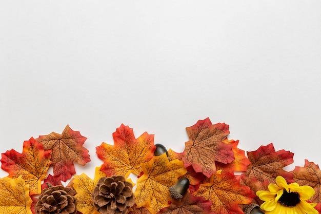 Elementi autunnali come foglie, ghiande e pigne nella parte inferiore dell'immagine su sfondo bianco