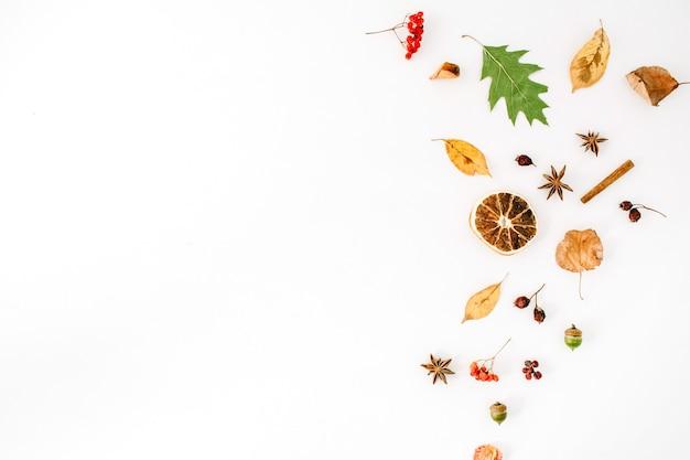 Autumn fall flat lay, top view disposizione creativa.