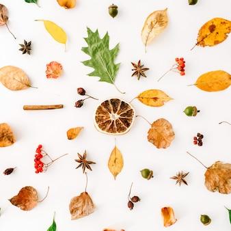 Autumn fall flat lay, top view creative pattern arrangiamento.