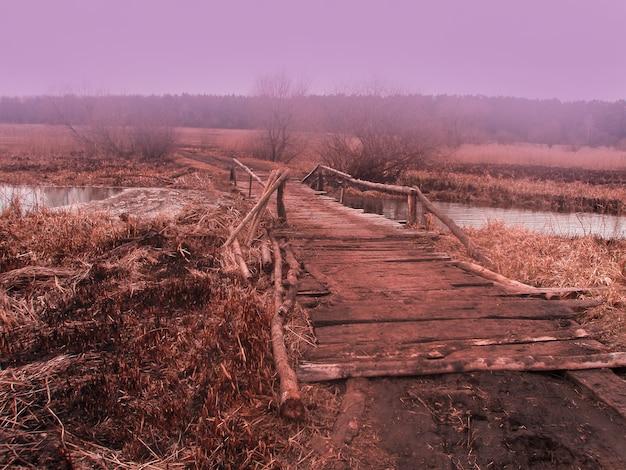 Foresta di caduta di autunno. piccolo ponte di legno nel bosco autunnale