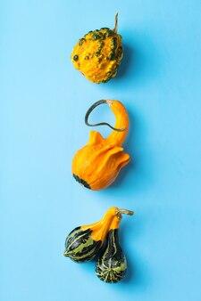 Composizione del giorno del ringraziamento autunnale con zucche arancioni decorative e foglie secche. disposizione piatta, vista dall'alto, copia spazio, sfondo di natura morta per biglietto di auguri