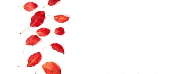Fondo piatto autunnale su bianco. composizione con foglie rosse realistiche. ciao ottobre concept