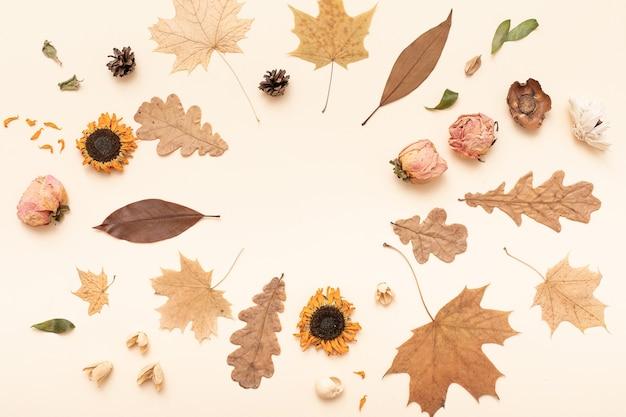 Composizione piatta autunnale. autunno, autunno, sfondo del giorno del ringraziamento. concetto di stagione autunnale. flatlay, vista dall'alto