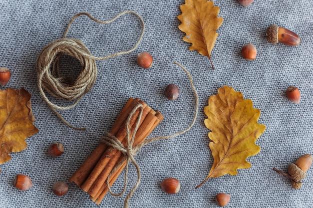 Autunno composizione piatta laici foglie d'autunno, bastoncini di cannella, querce, nocciole sfondo a maglia