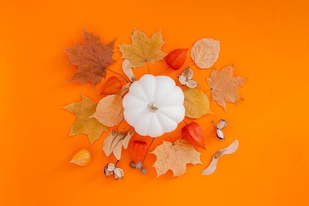 Composizione piatta autunnale con zucca bianca e foglie secche