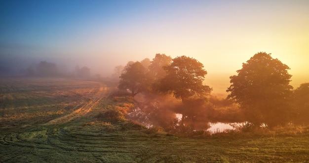 Alba nebbiosa autunnale. mattina nebbiosa all'alba. autunno scena rurale. piccolo fiume, alberi in prato e campo