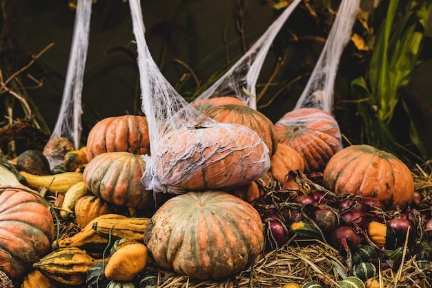 Decorazione all'aperto di autunno halloween con zucche