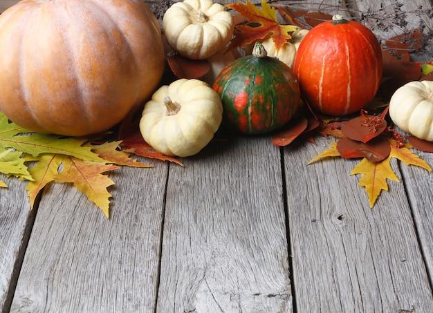 Sfondo raccolto autunnale. varie zucche, sorbo, mele e foglie di autunno su legno rustico stagionato