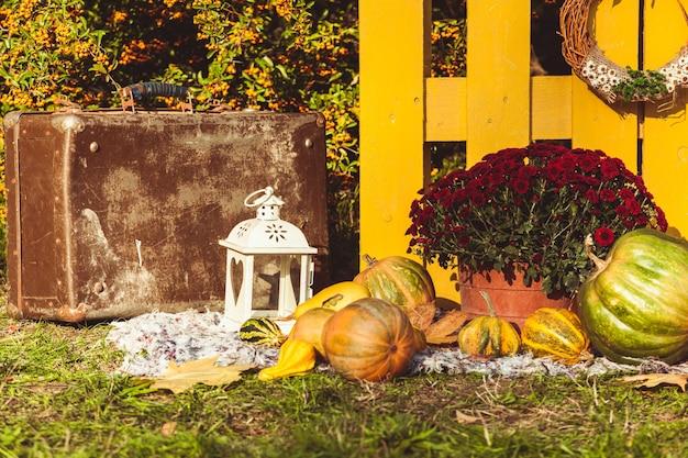 Festa del raccolto autunnale - cesto con frutti autunnali, vecchia valigia, zucche e fiori autunnali colorati. progettazione del paesaggio in stile country per la stagione autunnale.