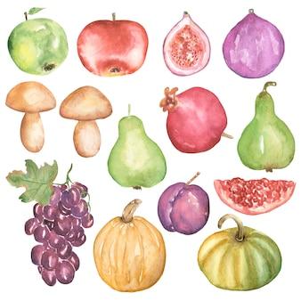 Autumn harvest set clipart, zucca dell'acquerello, mela, pera, fichi, uva, prugna, melograno, funghi, frutta autunnale grafica, verdura, cucina