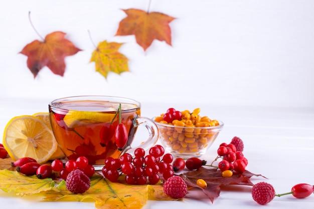 Concetto di bevande sane d'autunno. tazza di tè con bacche di autunno olivello spinoso, viburno, rosa canina, sorbo e foglie di autunno. bere con vitamina c
