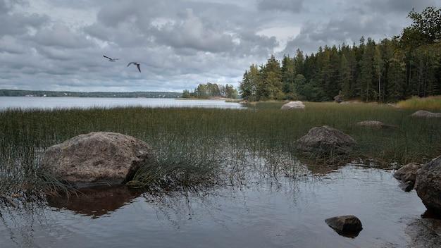 Paesaggio autunnale del nord, golfo di finlandia con isole di pietra vicino al parco monrepo nella città di vyborg