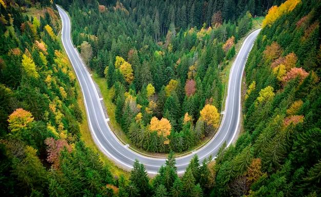 Paesaggio autunnale, strada asfaltata nella foresta di montagna. alberi gialli e rossi e conifere verdi creano un contrasto pittoresco.