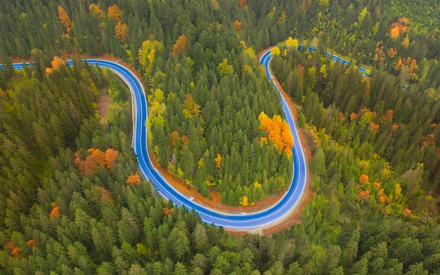 Paesaggio autunnale strada asfaltata nella foresta di montagna