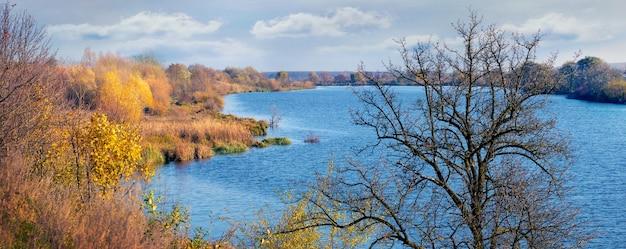Paesaggio autunnale con fiume azzurro e albero secco vicino al fiume in una giornata di sole