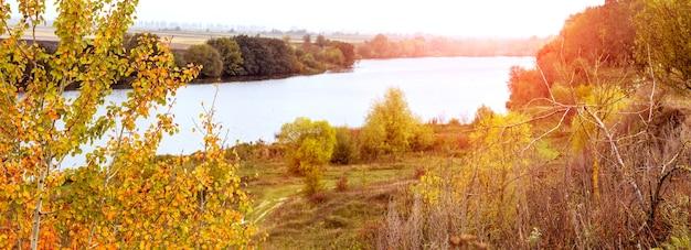 Paesaggio autunnale con alberi colorati e cespugli sulla riva del fiume e foresta in lontananza, panorama. autunno dorato
