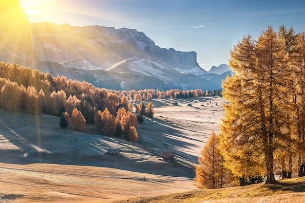 Paesaggio autunnale con montagna in alpe di siusi