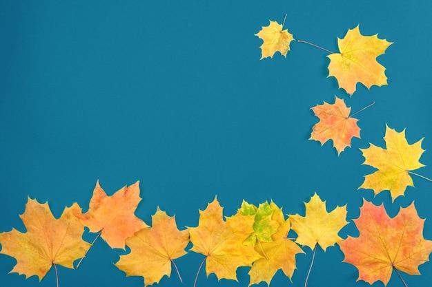 Le foglie d'autunno sono rosse e gialle su un vecchio fondo di legno blu. il concetto di vacanza, studio.