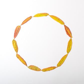 Foglie autunnali disposte in una cornice circolare. copia spazio per scopi diversi. composizione naturale autunnale su sfondo bianco