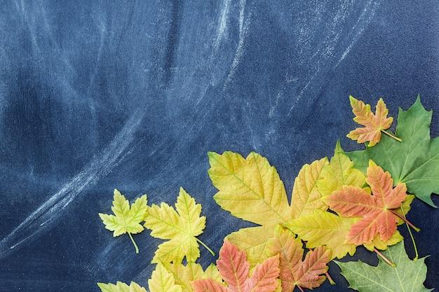 Foglie d'autunno sullo sfondo del collegio docenti