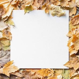 Cornice di foglie d'autunno con uno spazio bianco