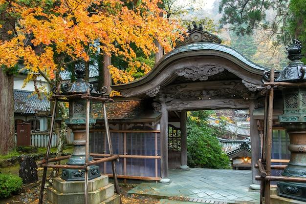 Foglie di autunno dell'acero giapponese (momiji) al fondo del tempio
