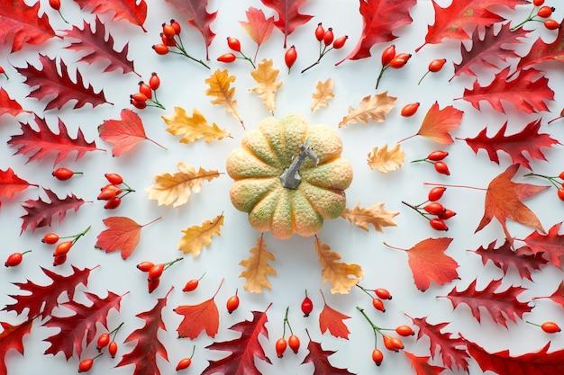 Foglie e zucca di autunno, disposizione simmetrica piana, vista superiore nei toni rossi ed arancio su fondo bianco.
