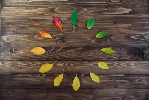 Le foglie di autunno messe in un cerchio passano dal verde al rosso su un fondo di legno