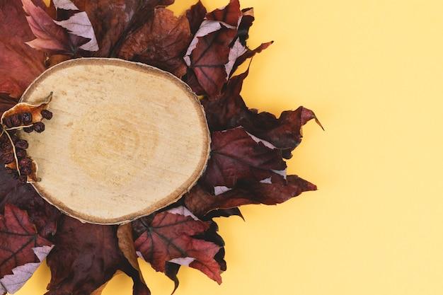 Foglie di autunno e legno a fette su uno sfondo colorato caldo.