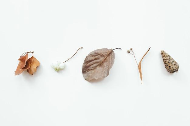 Foglie di autunno su sfondo bianco. autunno, concetto di caduta. appartamento laico, vista dall'alto, copia dello spazio