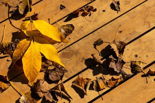 Foglie di autunno su uno sfondo di legno con copia spazio