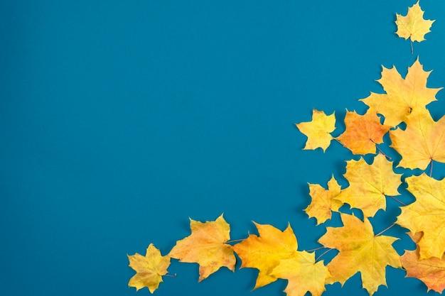 Foglie di acero di autunno sulla tavola di legno. fondo naturale delle foglie che cadono.
