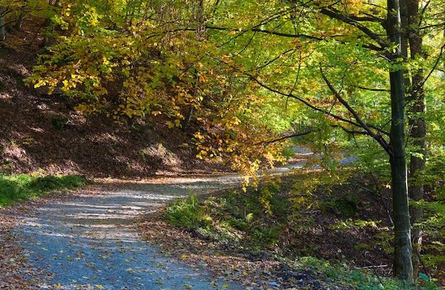 Strada sporca di montagna autunnale e bella foresta di faggi di ottobre (carpazi, ucraina).