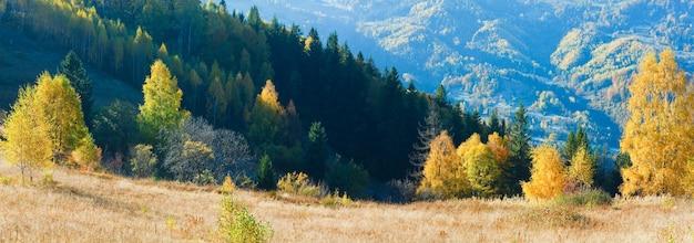 Panorama di montagna autunnale (carpazi, ucraina) e alberi colorati sulla collina. due scatti foto composita.