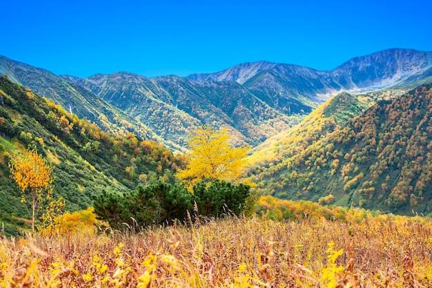 L'autunno in montagna. bella vista autunnale della penisola di kamchatka