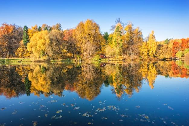 Alberi multicolori di autunno con la riflessione di specchio in tsaritsyno a mosca