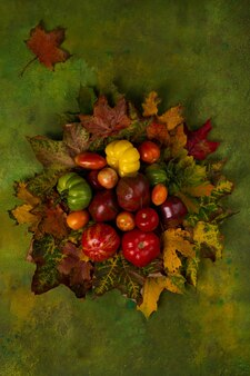 Concetto di natura autunnale. pomodoro con foglie su sfondo verde.