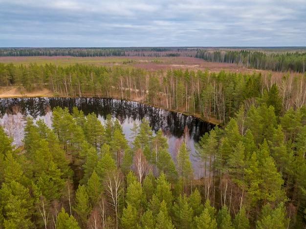 Autunno nella foresta settentrionale. piccolo lago tra i pini. vista aerea