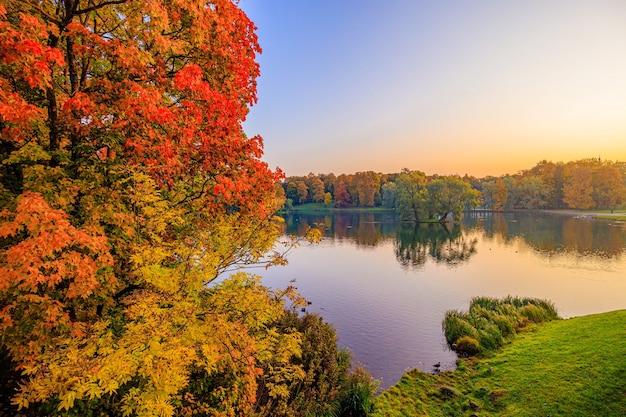 Paesaggio del parco autunnale con un lago. autunno. una nuova stagione. bel paesaggio. alberi gialli. foto per prodotti stampati. un articolo sull'autunno. parco
