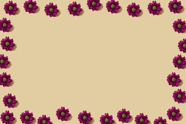 Motivo autunnale in colore giallo e viola. fondo minimo del fiore della margherita d'autunno. layout creativo autunnale. disposizione piana con lo spazio della copia.