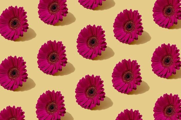 Motivo autunnale in colore giallo e viola. fondo minimo del fiore della margherita d'autunno. layout creativo autunnale.