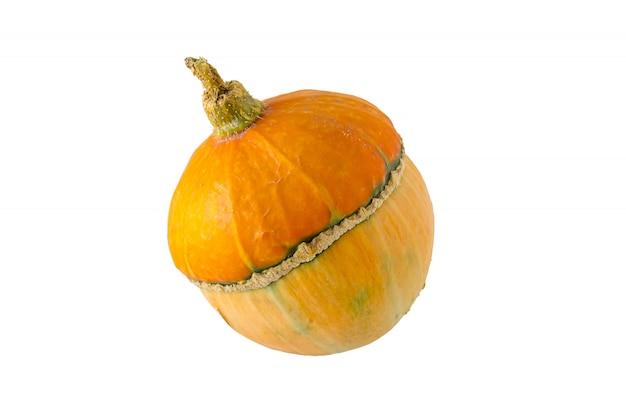 Zucca d'autunno